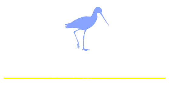 American Gallery Home Logo White